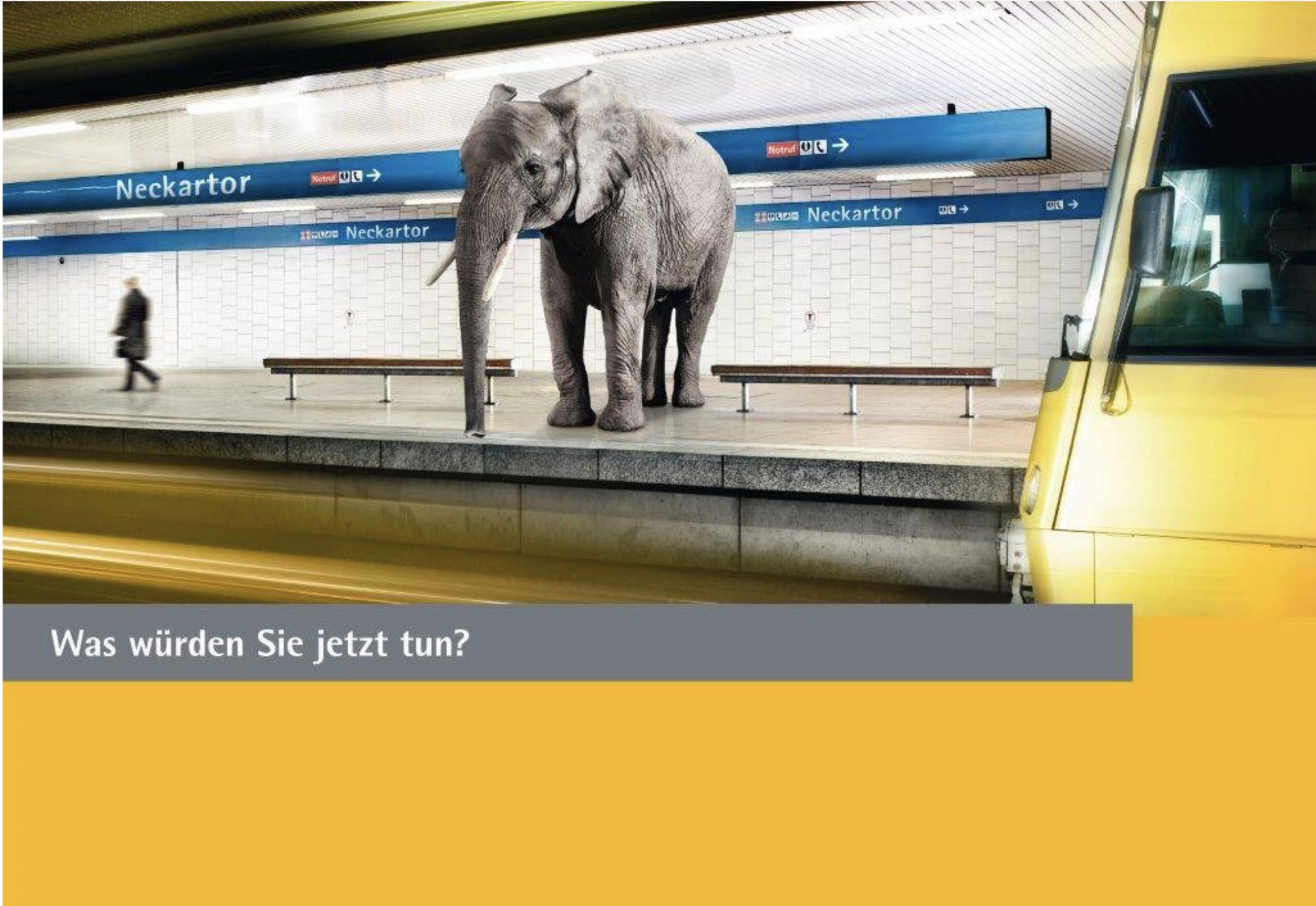 Eine Elefant steht am Bahnsteig Neckartor in der Stuttgarter U-Bahn. Symbol für eine herausfordernd Situation. Ist das Eignungsdiagnostik und social Media Recruiting?