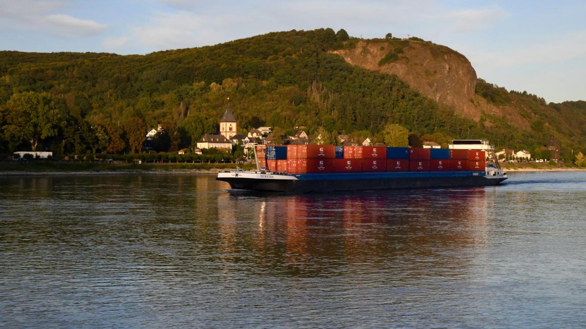 Containerschiff auf dem Rhein. Das schöne Rheintal.